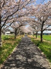 まさ, 18, Japan, Osaka-shi