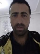 Serkan, 28, Turkey, Ankara