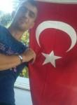 Tarrik, 31  , Ankara