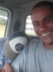 LUIZ FERNANDO HO, 36  , Ribeirao Preto