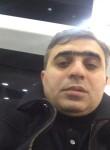 akuna matata, 35  , Baku