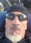 Lobo, 62  , Tigre
