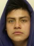 Giovanni Maldo, 27  , Mount Prospect
