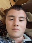 Ovb, 20  , Groznyy