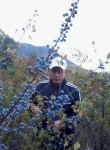 krym krym, 46, Alushta