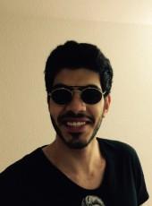 Bob, 24, Lebanon, Beirut