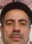Honor Sekkizs, 55  , Baku