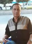 شوقي, 51  , Kafr ash Shaykh