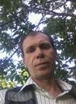 ALIKA DR., 46, Bucharest