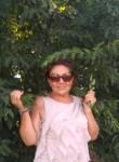 Svetik, 57  , Bologna