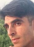 Tariel, 25  , Ashgabat