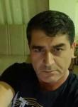 tamer, 42  , Bodrum