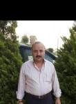 Sehata, 45  , Cairo