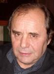 Pavel, 71, Vidin
