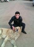 Hayk, 30  , Abovyan