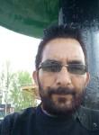 mirgulammohuid, 37 лет, Srinagar (Jammu and Kashmir)