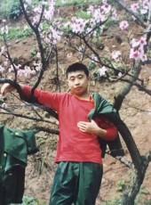 wangyong, 38, China, Taiyuan