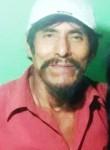 Tamakun moreno, 63  , Lima