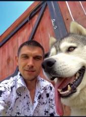 Dmitriy, 33, Russia, Ryazan