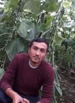 bobir sobirov, 31  , Shofirkon