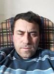 Волк777, 43, Tbilisi