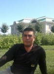Gayrat, 35  , Lomonosov