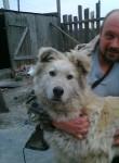 Lexx, 49  , Kargat