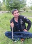 vladimir, 35  , Vulcanesti