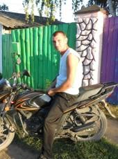 Aleksey, 35, Russia, Ukholovo