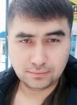 Nekruz, 29  , Surgut