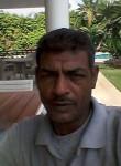 الاصل الباردي, 50  , Cairo