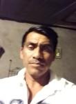 Jesu, 35  , Chilpancingo de los Bravos