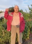 Viktor, 73  , Rossosh