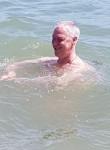 Morris, 58  , Clearwater