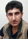mohammad.n, 35  , Berlin