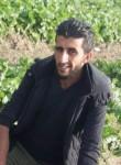 Abu, 29  , Irbid