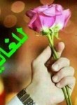 Malotbib70@gmail, 28  , Jeddah