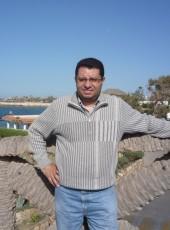 Mokhammed, 50, Egypt, Hurghada