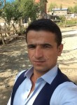 SNİKIRS, 32  , Ayvalik
