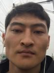 Artem, 30  , Cheonan