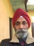 kehar1948, 58 лет, Pinjaur