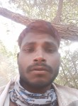 में दढ, 18  , Jodhpur (Rajasthan)