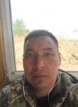 nurzhan, 46  , Astana