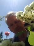 Hasib, 50  , Sarajevo