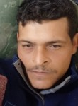Elenter, 39  , Londrina