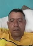 Jarocho ver, 52  , Puebla (Puebla)