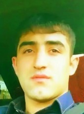 Rustam, 27, Kazakhstan, Astana