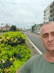 Imer, 52  , Ostend