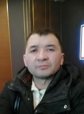 Anton, 31, Russia, Saint Petersburg