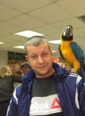 evgeniy, 37, Russia, Sarov